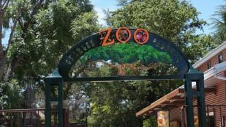 Atascadero Charles Paddock Zoo