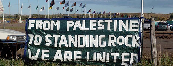 Activists from around the world, including Palestine, are expressing solidarity with the water protectors.