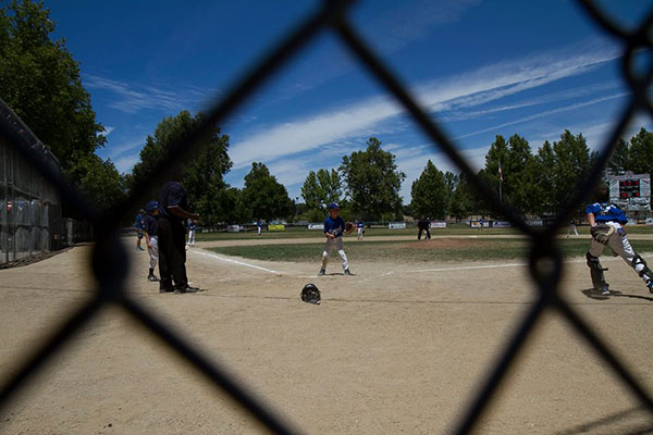 Little Leaguers swinging it at Paloma Creek Park.
