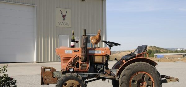 tractor-with-chicken-600x399