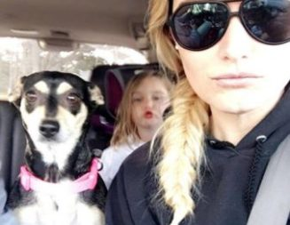 Update: Dog and little girl reunited after car accident