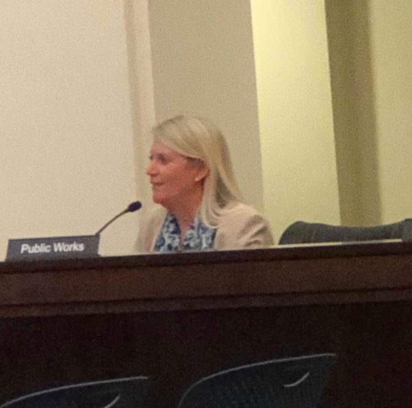 Assistant City Manager Terrie Banish discussing the marketing efforts.