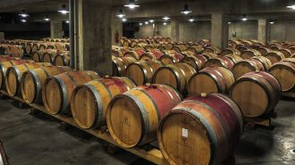 Strategies local wine producers can use to boost income