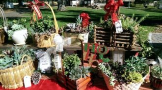 Pavilion on the Lake holiday boutique returns this year outdoors