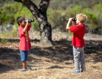 Explore the 'Mystery of Trees' at the San Luis Obispo Botanical Garden