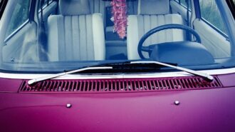 windshield repair Paso Robles
